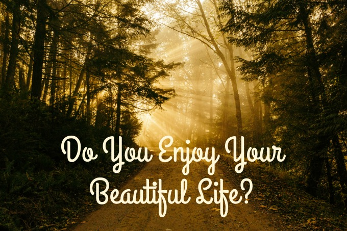 Do you enjoy your beautiful life? One simple question that stopped me in my tracks and forced me to evaluate my life.